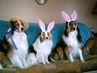 Easterbonets