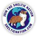 image from www.sheltienation.com