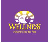 Landing_wellness_logo