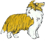 Sheltie Nation Mascot