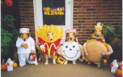 Shelties dressed as fast food