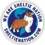 The NEW Sheltie Nation Sticker!