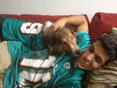 sheltie kissing owner during football game