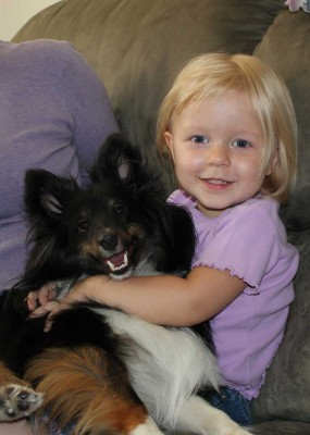 Child hugging Shetland Sheepdog