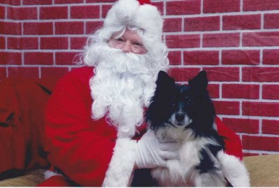 Sheltie and Santa Clause