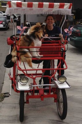 Shelite in bike basket