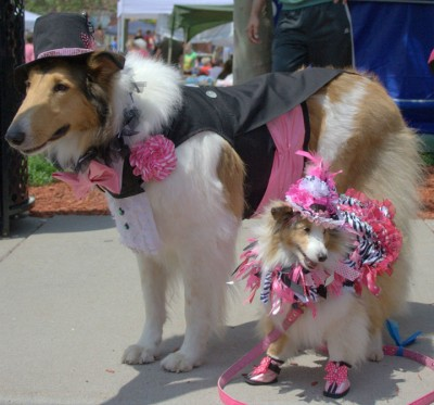 costumeshelties