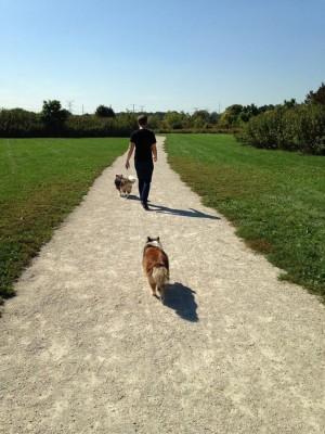 walkingpath