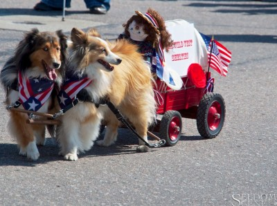 labordayparadeshelties