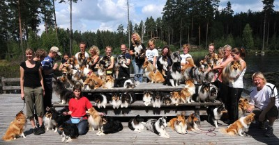 lottashelties
