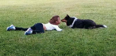 sheltie-kiss-child