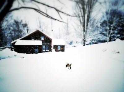 john-walk-snow