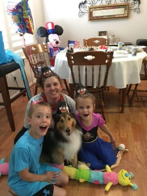 sheltie-scout-birthday