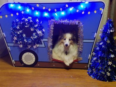 Sheltie in RV doghouse