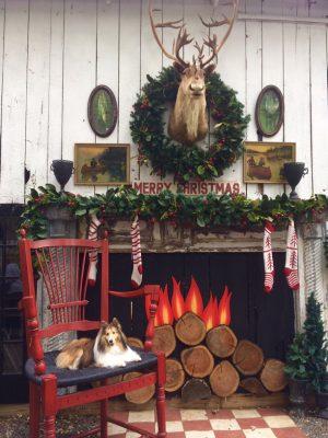 Sheltie holiday scene